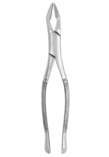 Extracting Forceps